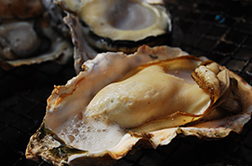 Grilled Oyster (Kashima City / Tara Town)
