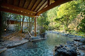 Ureshino Hot Spring (Ureshino City)